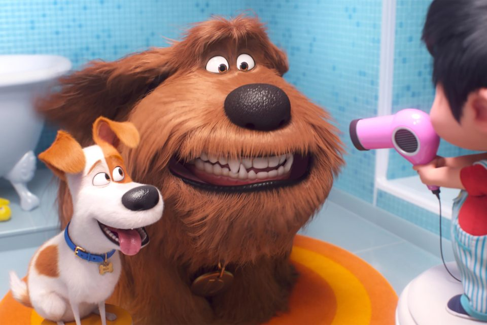 The Secret Life of Pets 2 (from left) Max (Patton Oswalt), Duke (Eric Stonestreet) and Liam