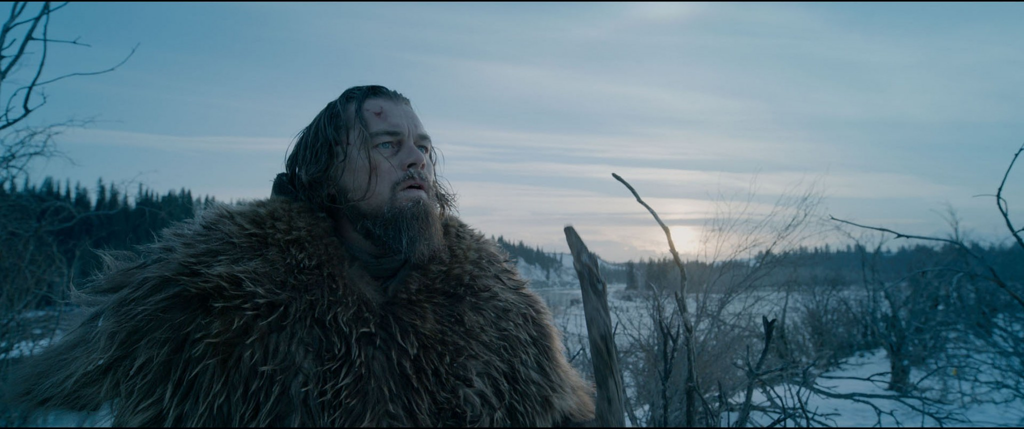 The Green-Light | The power of narrative will help Leo win his Oscar