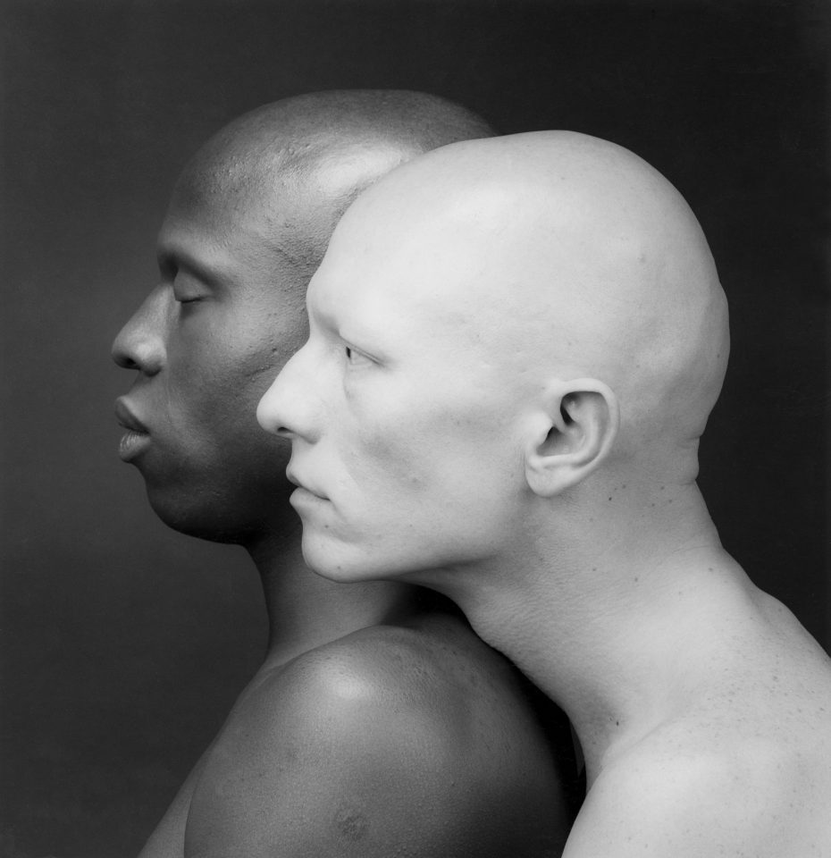Mapplethorpe_Look_at_the_Pictures