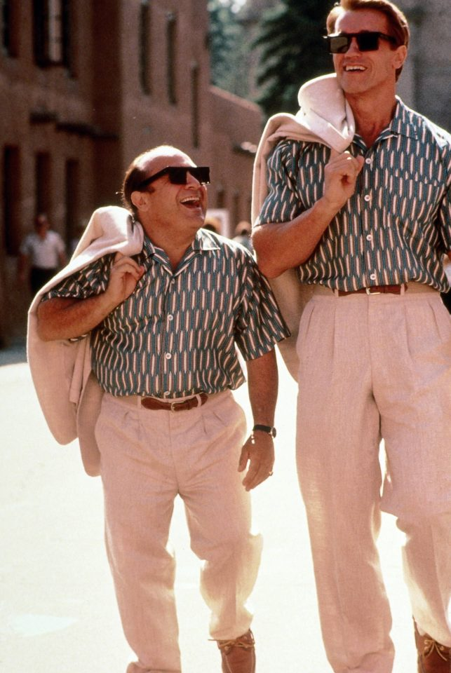 Twins sequel put on hold