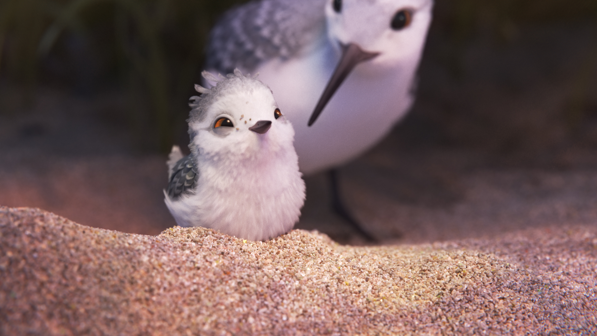 """""""Piper,"""" a hungry sandpiper hatchling discovers that finding food without mom's help isn't so easy."""