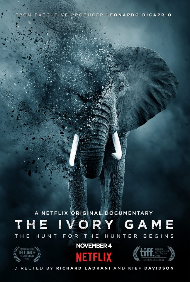 The_Ivory_Game