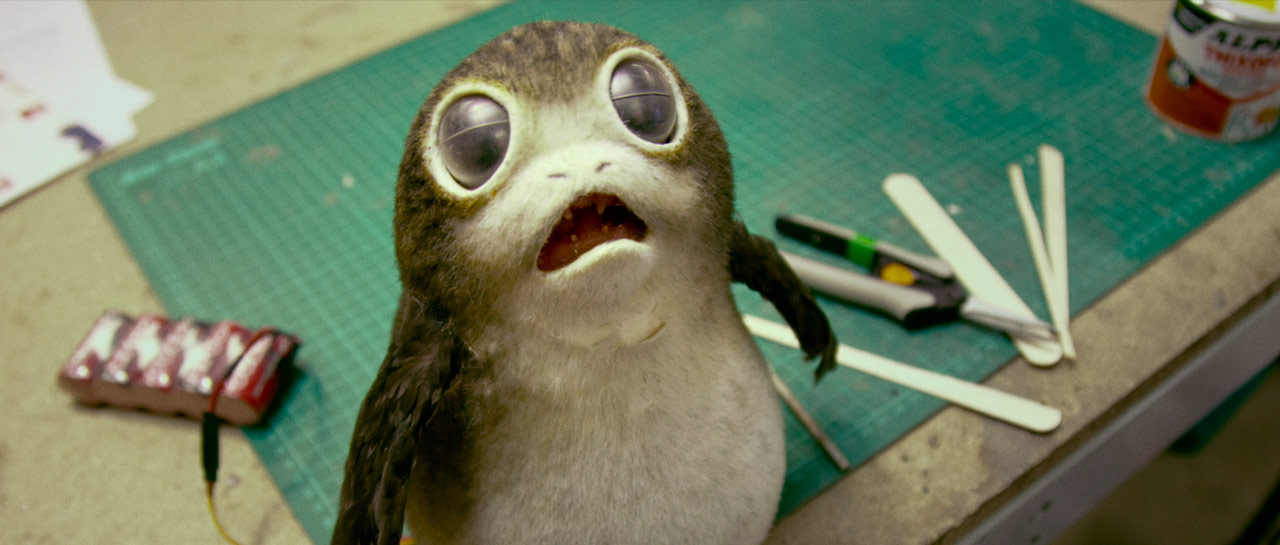 d23-porgs-screenshot-the-last-jedi