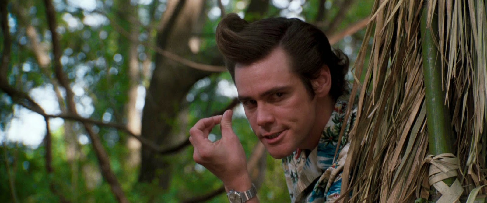 jim-carrey-ace-ventura-2
